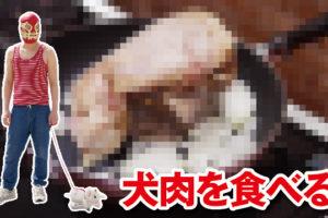 犬肉,犬料理