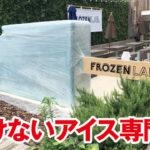溶けないアイス専門店,フローズンラボ,フローズンリーフ
