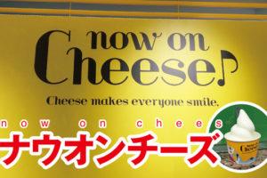 ナウオンチーズ,ルミネ,新宿,メニュー,商品,カマンベール